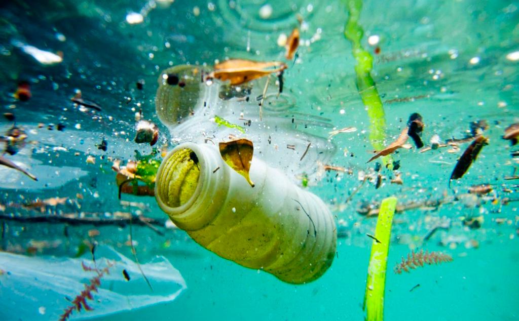 [Infographic] Môi trường sống đang ô nhiễm vi nhựa nghiệm trọng