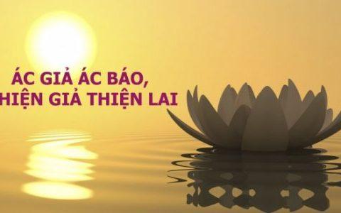 Việc gì cũng có nhân quả của nó | Phật Giáo Việt Nam