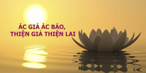 Việc gὶ cῦng cό nhân quἀ cὐa nό | Phật Giάo Việt Nam