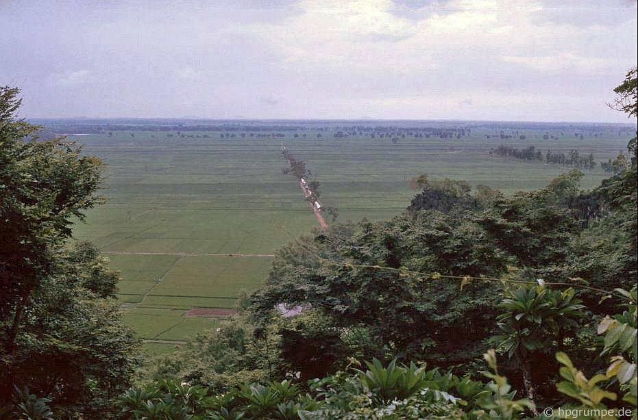 Ruộng lύa ở đồng bằng sông Hồng