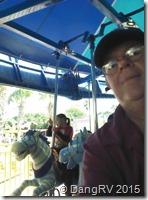 Seaworld Carousel