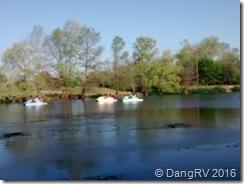 Landa Park Paddle Boating