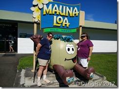 Mauna Loa plantation