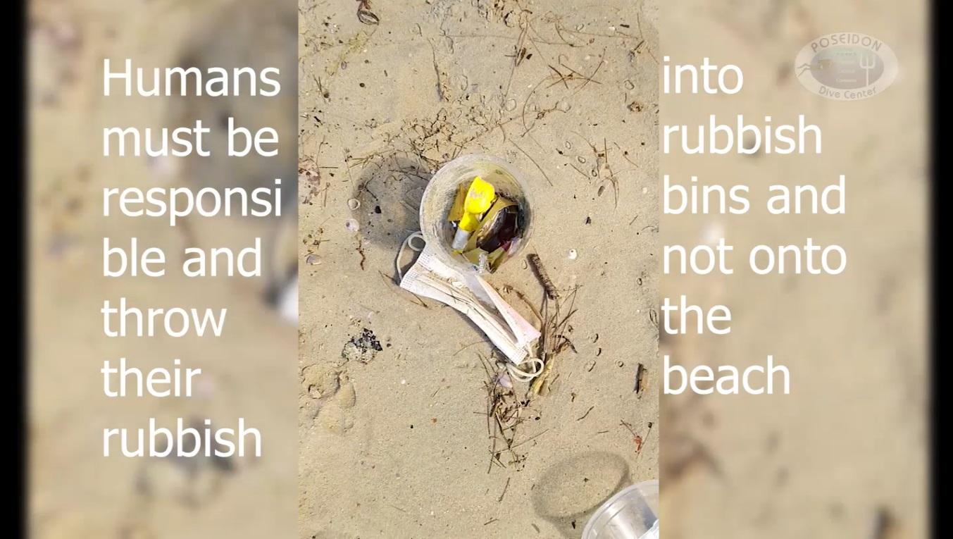 Beach Clean Up5
