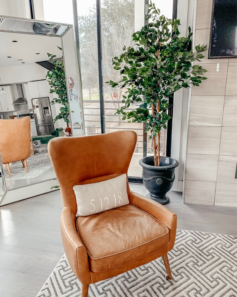 west elm chair potted plant