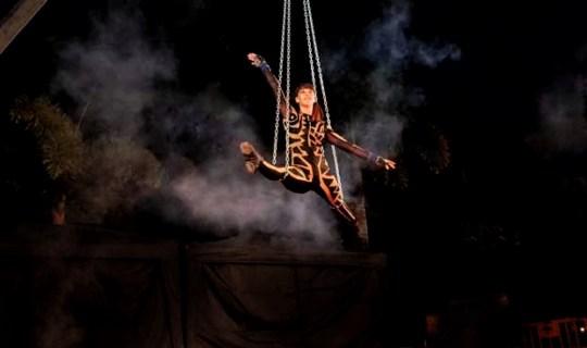 magic-circus-show-24