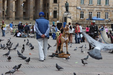 Just a few of the pigeons waddling around La Plaza de Bolivar in the heart of Bogota. Photo credit to Andrew Allee.