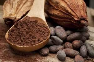 cose da vedere e fare a samana: ruta del cacao