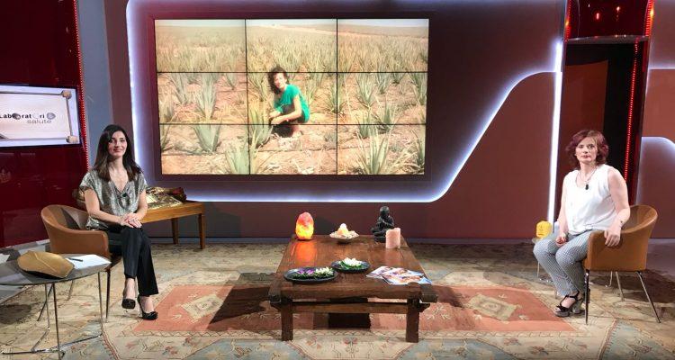 Perché fa bene bere l'Aloe Vera (di Santo Domingo) - Ospite a Telecolor Tv