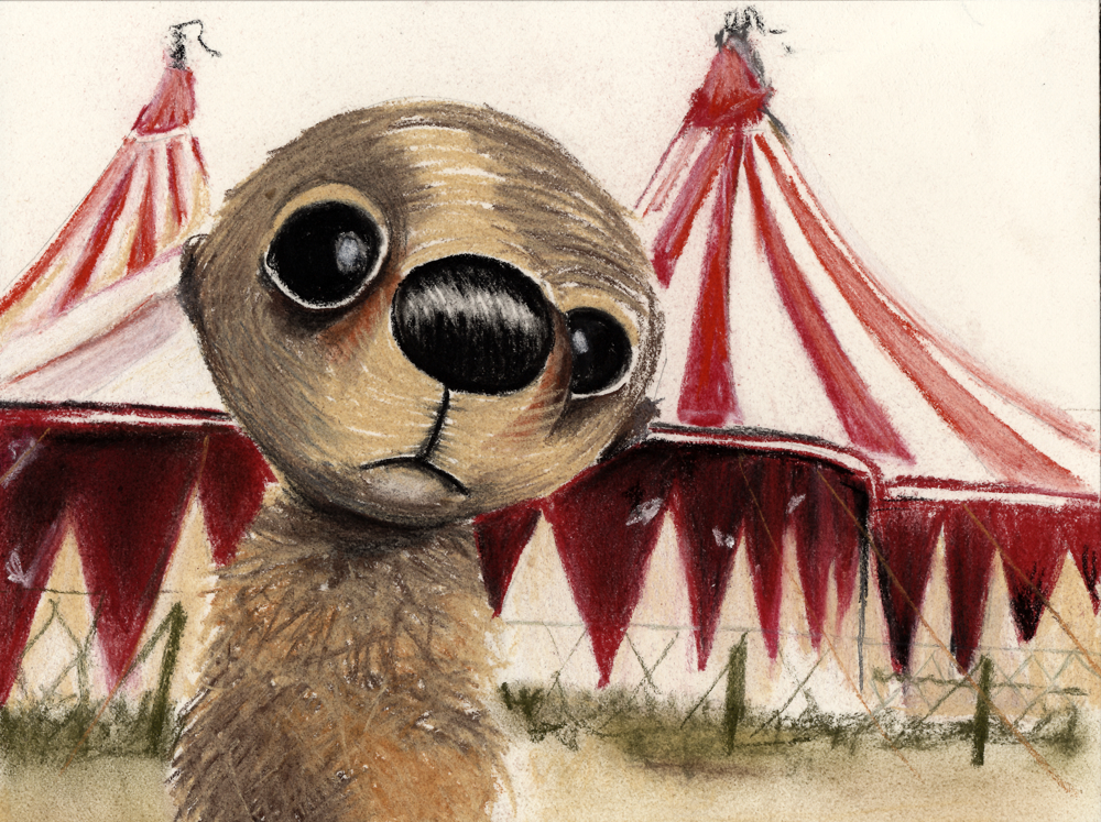 illustration_circus pet_original