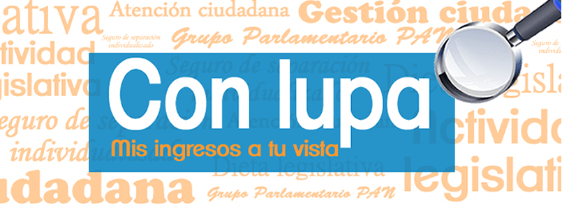 GPPAN sueldo Asesoría Legislativa sueldo Ingresos y egresos para atención ciudadana y actividad legislativa