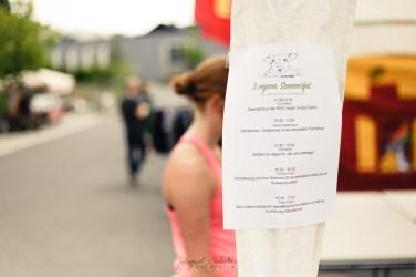 3. Veganes Sommerfest in Leverkusen 2017 9761 von Daniel Bierstedt