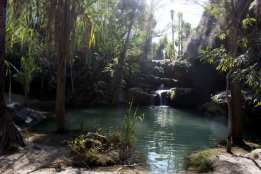 Isalo National Park Oasis 2
