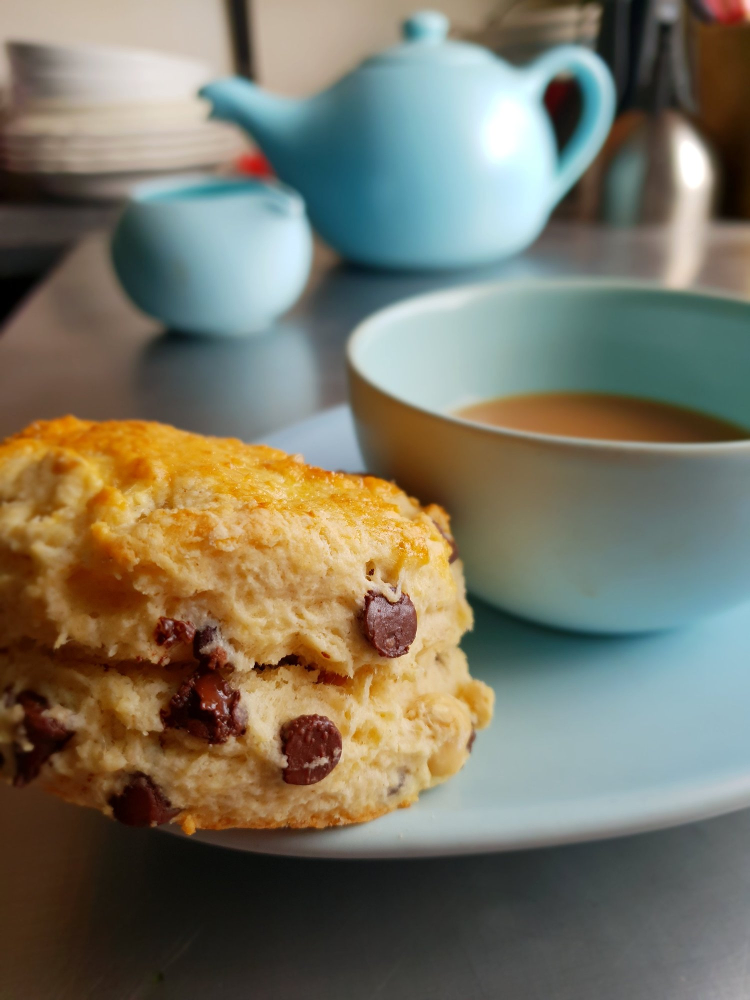 chocolate chip and hazelnut scones