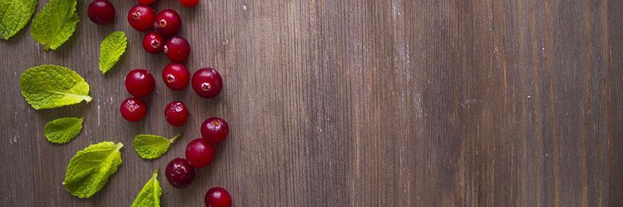 frutas-vermelhas-cranberry-Blog-Daniele-Leite