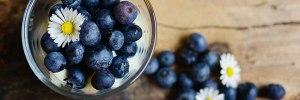 frutas-vermelhas-mirtilo-Blog-Daniele-Leite