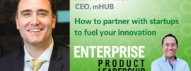 EnterpriseProduct Leadership - how to partner with startups 400