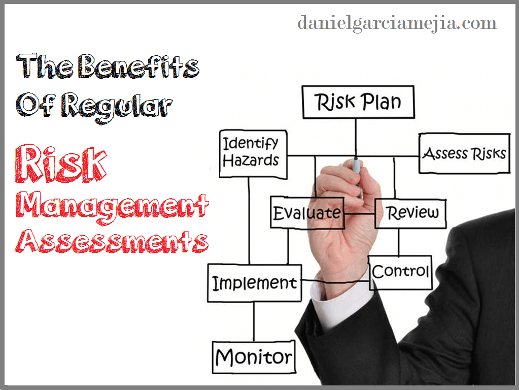 risk management Assessments miniatura
