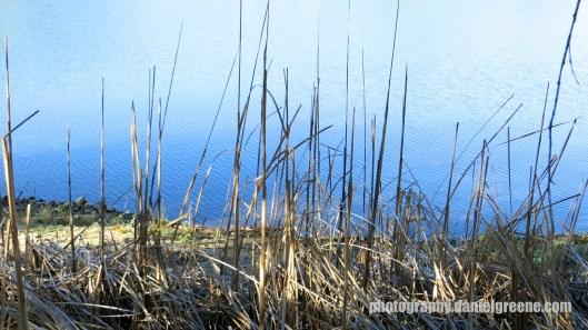 Lynx Lake (10 of 24)