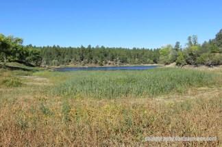 Lynx Lake (16 of 24)