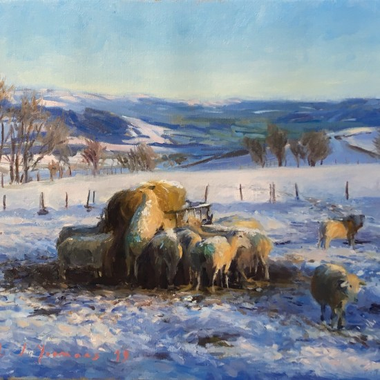 Oil painting. The first snowfall in Winter. Sheep feeding in the morning light