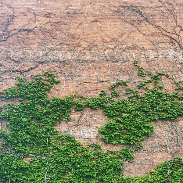 okc brick wall