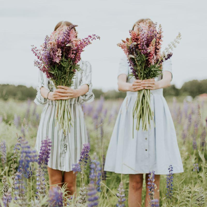 by Daiga Ellaby on unsplash make new friends Danielle Comer blog
