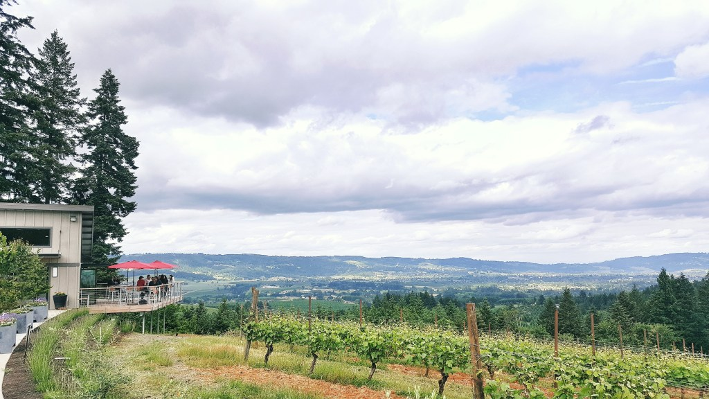 Lange-Winery-Oregon-Wine-Country-Danielle-Comer-Blog