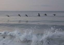 Playa Hermosa Dawn070114_18
