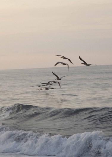 Playa Hermosa Dawn070114_24