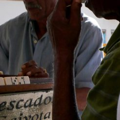 Joueurs de domino à Florianopolis