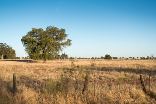 40_cad-factory-the-darling-downs