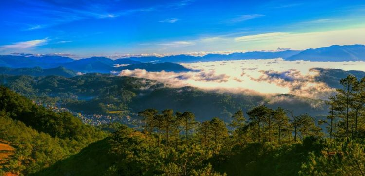 Mt Ampacao is one of the best places to visit in Sagada