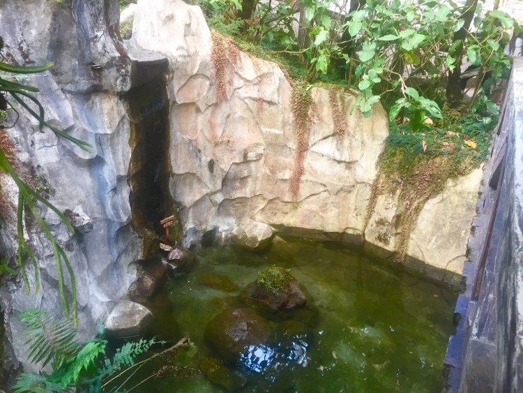 One of the wishing wells in Botanical Garden Baguio