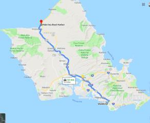 Waikiki to North Shore Shark Dive