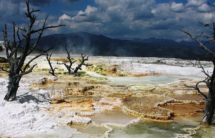 minerva-terrace-yellowstone-national-park