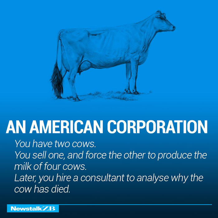 An American Corporation: You have 2 cows