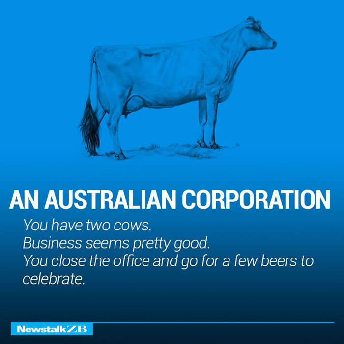 An Australian Corporation: You have 2 cows