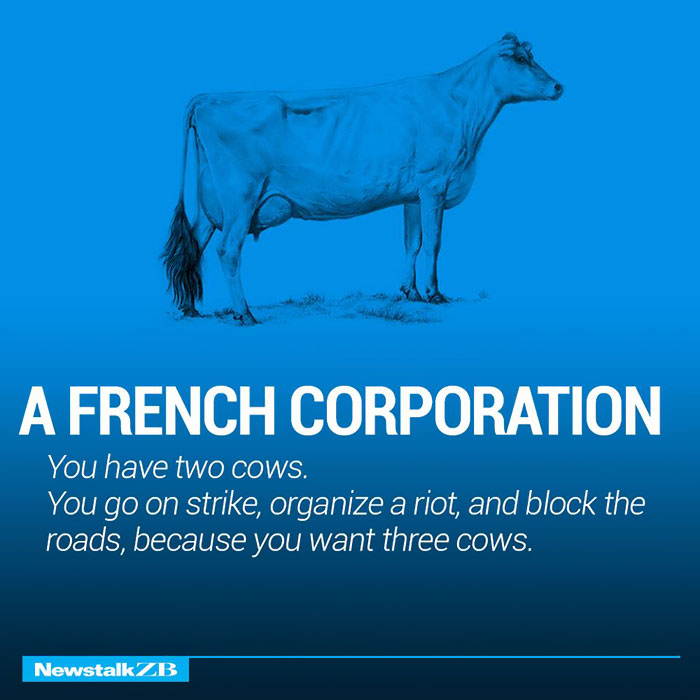 A French Corporation: You have 2 cows