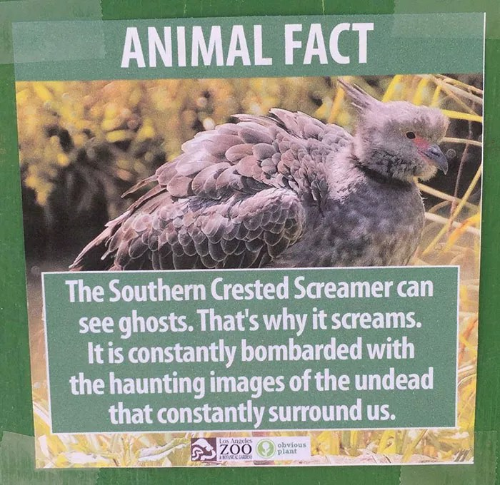 fake-animal-facts-los-angeles-zoo-4