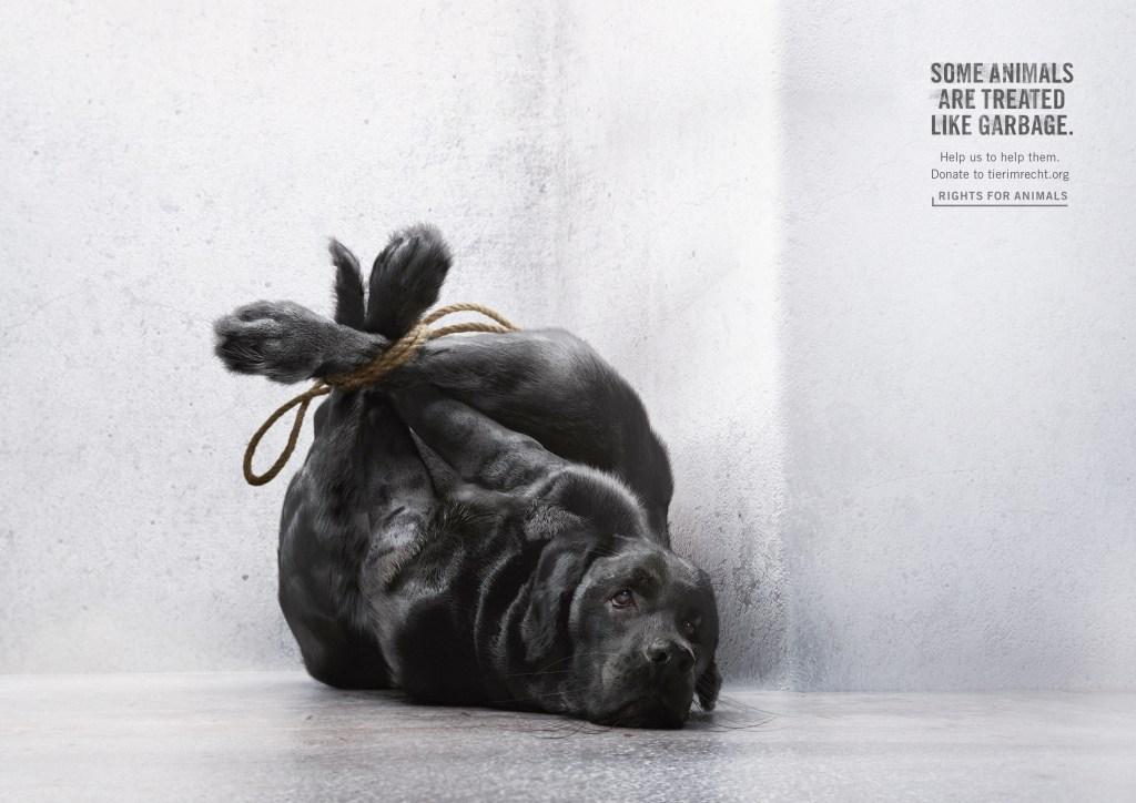 foundation-tier-im-recht-animals-garbage-bags-2