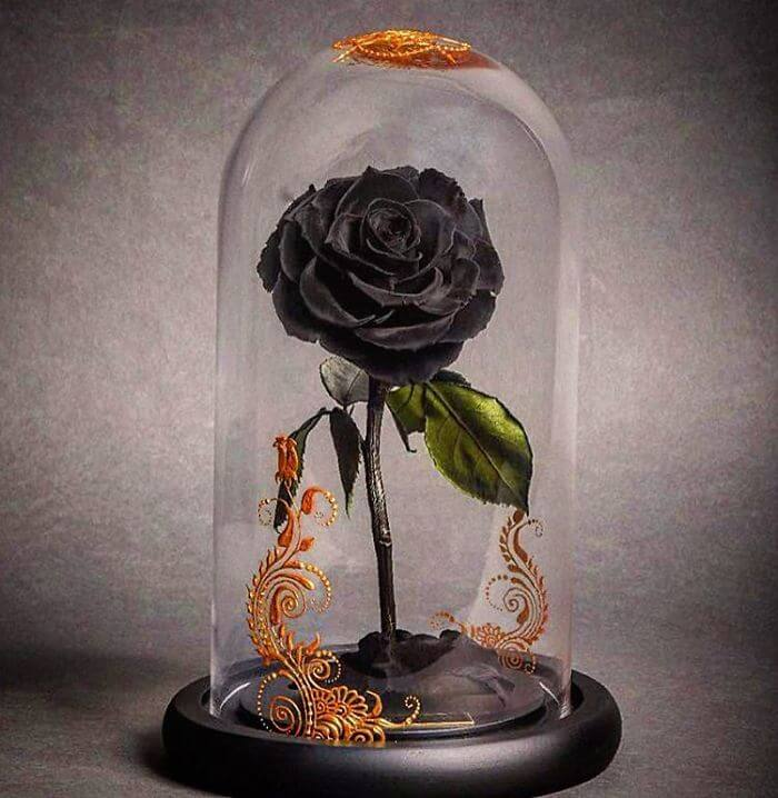 Beauty and the Beast inspired roses that live forever