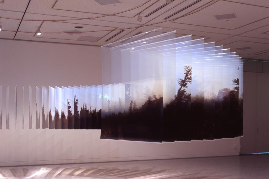 Multidimensional landscapes created from hundreds of photos