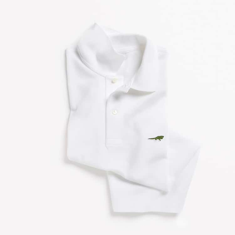 Limited Edition Lacoste Endangered Species Polos: Anegada Ground Iguana