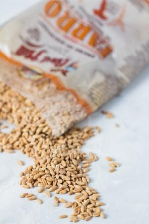 Farro Grain