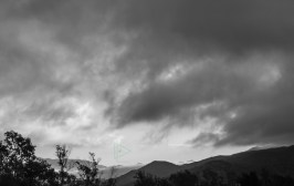 Did I mention overcast images make great black and white photos?