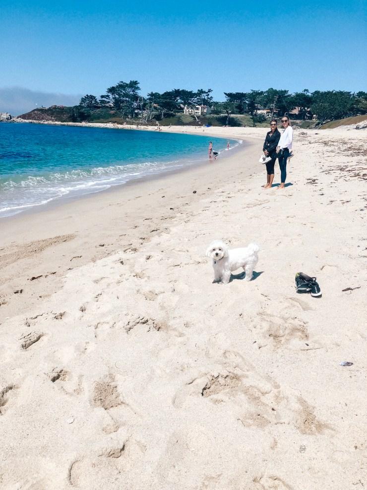 Carmel by the Sea-Big Sur-Monterey-vegan