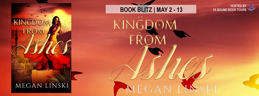 #Spotlight: KINGDOM SAGA by Megan Linski