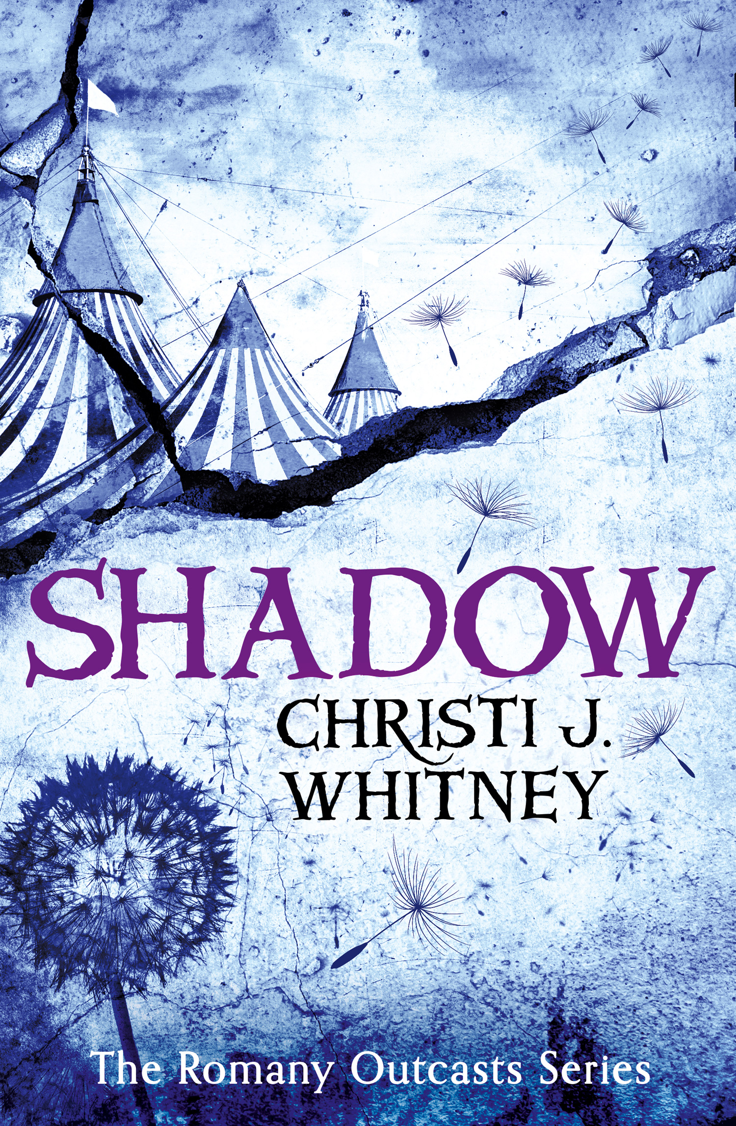 #BookReview: SHADOW by Christi J. Whitney