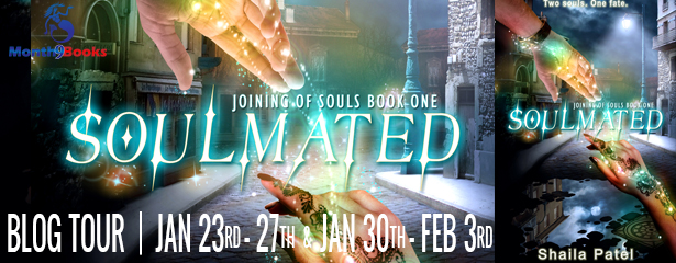 #Excerpt: SOULMATED by Shaila Patel